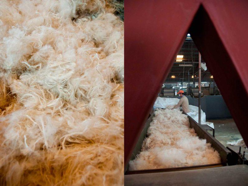 Dernière étape, les fibres sont transformées en Espagne pour leur donner cette texture si particulière du Piñatex.